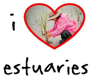 The I Love Estuaries Campaign Logo for 2014