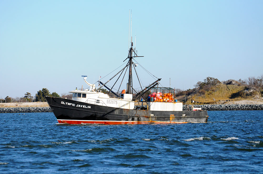 Resources anep for Barnegat bay fishing