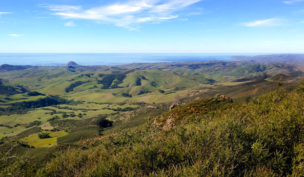 A view from the upper watershed down towards Morro Rock and the Morro Bay estuary, with greater Estero Bay and the Pacific Ocean on the horizon.